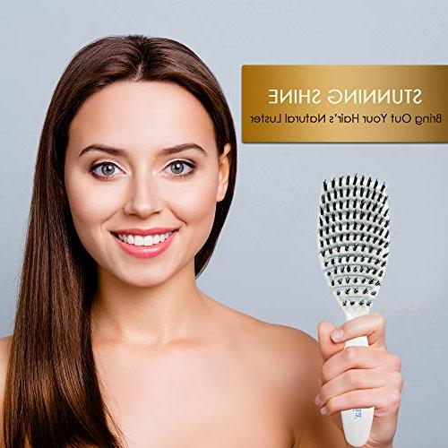 Detangling Flexi Brush Nylon and Bristles - Vented Hair Brush for - Detangle Brush with Minerals Shiny Hair Dry by